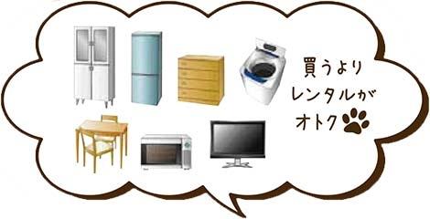 pic_kuroneko01.jpg